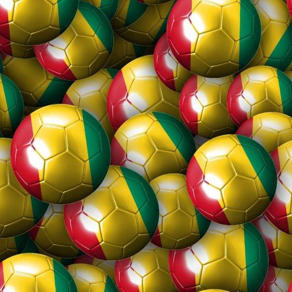 Guinea Soccer Balls