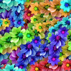 Hippie Flowers 24