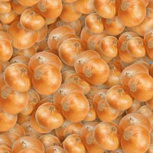 Onions 22