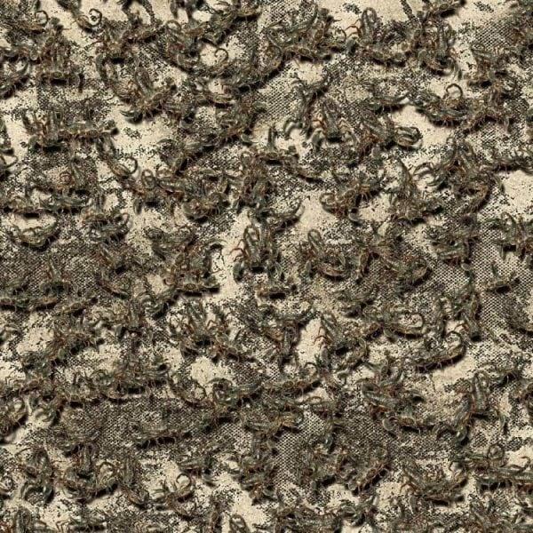 Scorpion 22 Camouflage