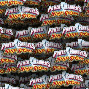 Power Rangers Ninja Storm 21