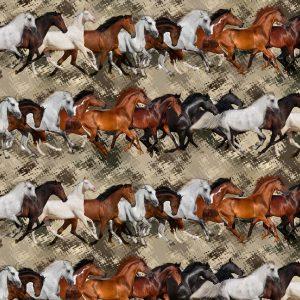 Running Mustangs 24