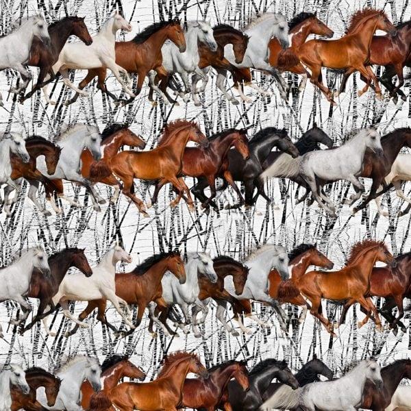 Running Mustangs 25